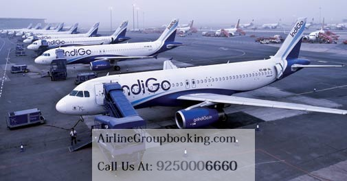 indigo airways booking Archives - airline group booking