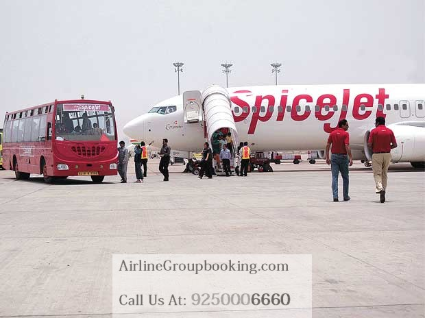 SpiceJet Airline Group Booking - Spicejet Group booking
